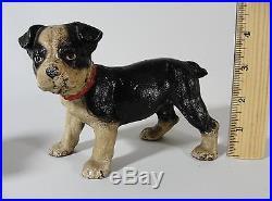 Small Antique BOSTON TERRIER Dog Cast Iron HUBLEY Doorstop, Original Paint