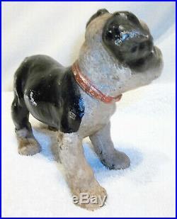 Small Antique Hubley Cast Iron Boston Terrier Pup Doorstop Nice Original Paint