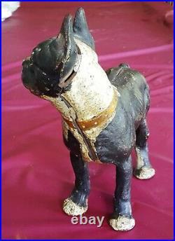 The Best Hubley Boston Terrier Bull Dog Figural Doorstop Amazing Paint Patina